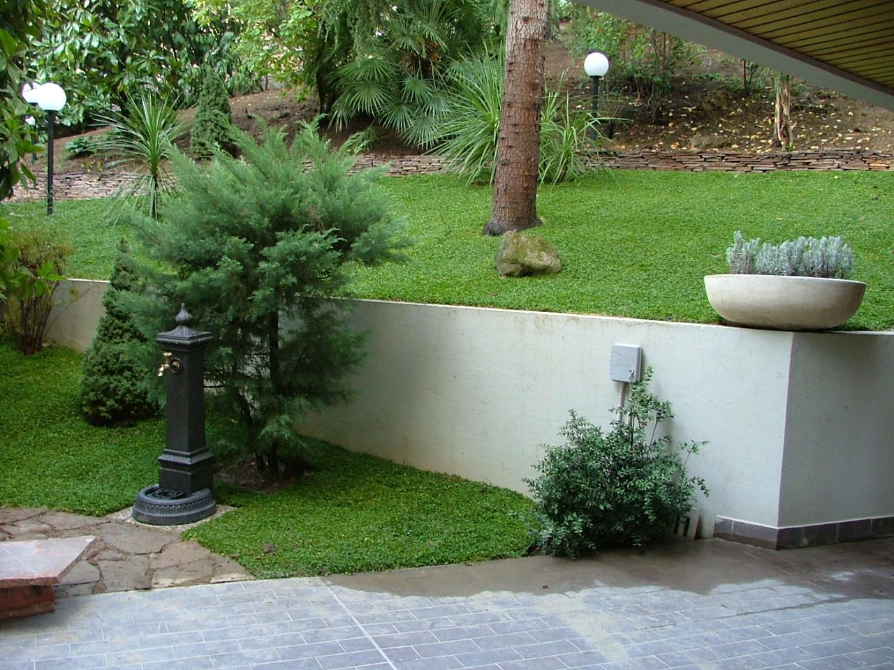 Impresa edile realizzazioni pulizie potature e for Sistemazione giardino